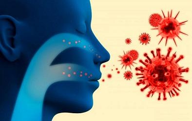 Coronavirus enters the nose